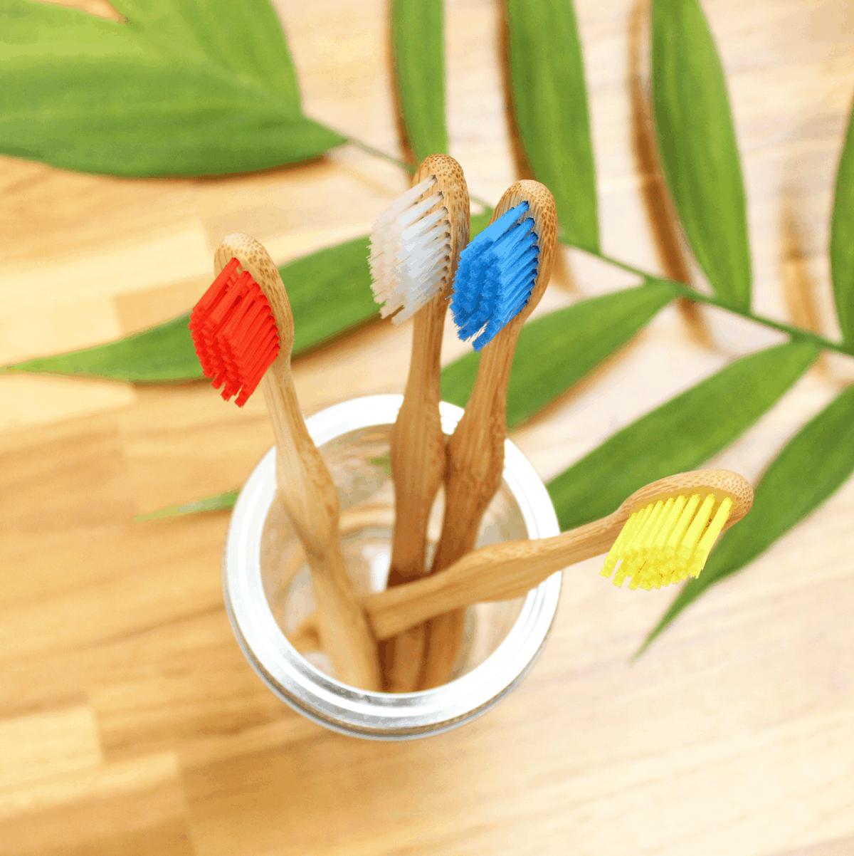 evitar plásticos não recicláveis, escova de bambu, beegreen