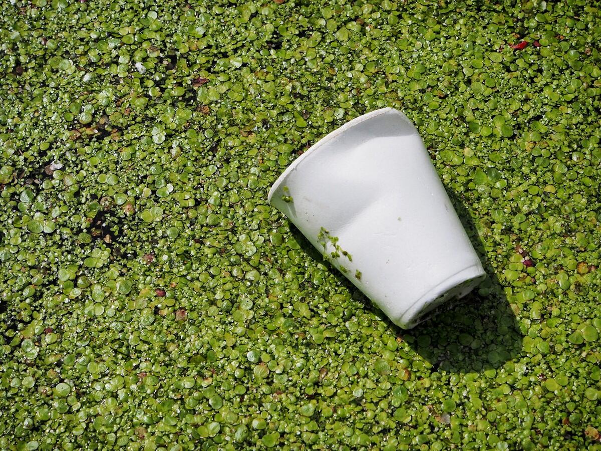 O impacto do Copo plástico descartável no Meio Ambiente