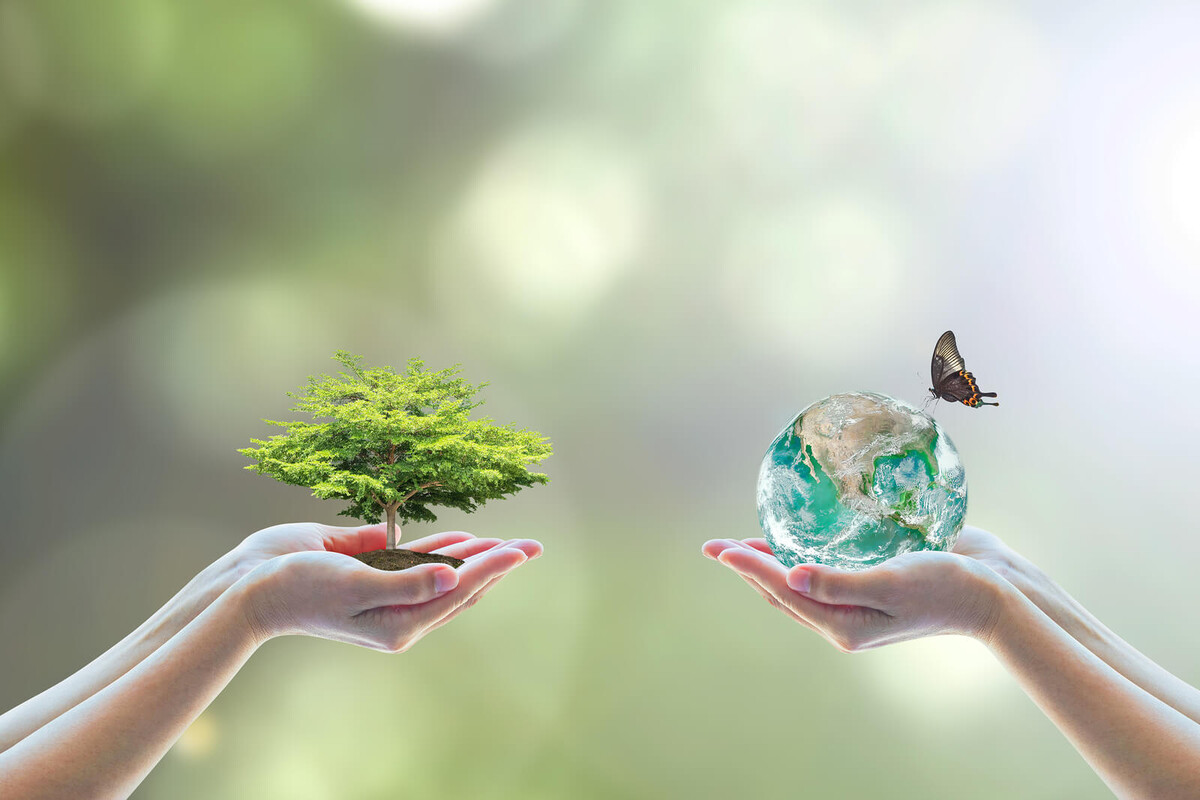 Dia do amigo: 3 SUPER DICAS para uma boa relação de amizade com o planeta