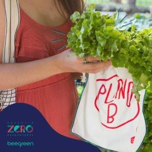 como-comprar-frutas-zero-waste-para-golfinhos