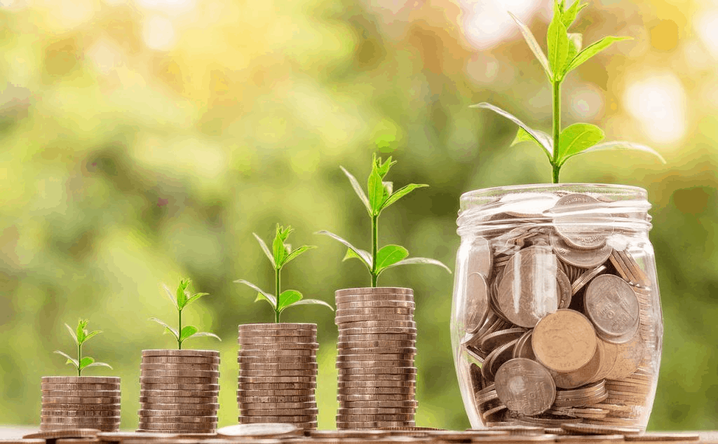Meio ambiente e economia: confira 5 dicas de como ganhar dinheiro com sustentabilidade