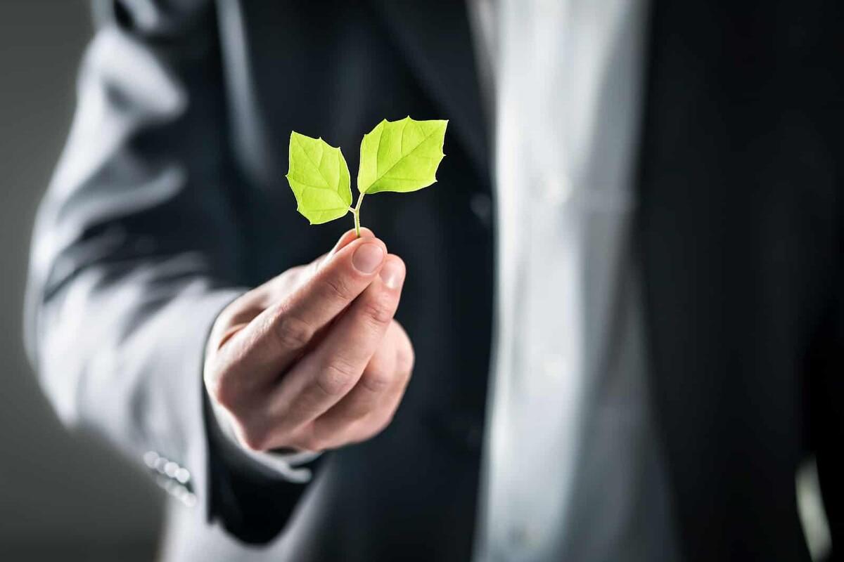 3 Dicas simples para reduzir o lixo nas empresas