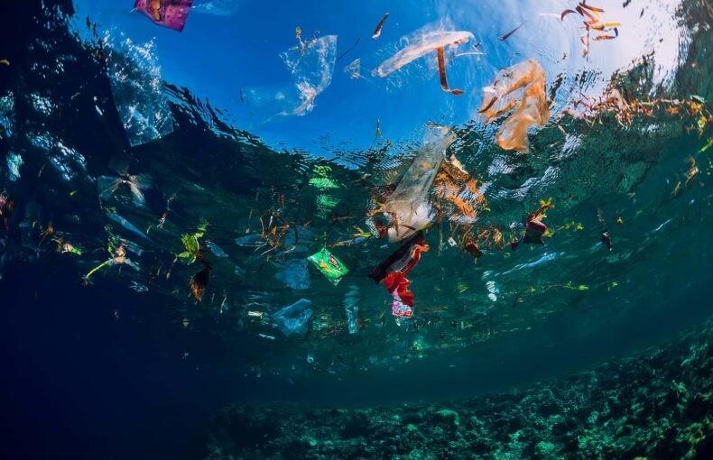 7 projetos incríveis que retiram lixo dos mares e rios! A poluição da água é um grande problema ambiental. Mas alguns projetos já estão fazendo a sua parte para retirar lixo dos oceanos. Saiba mais sobre alguns deles!