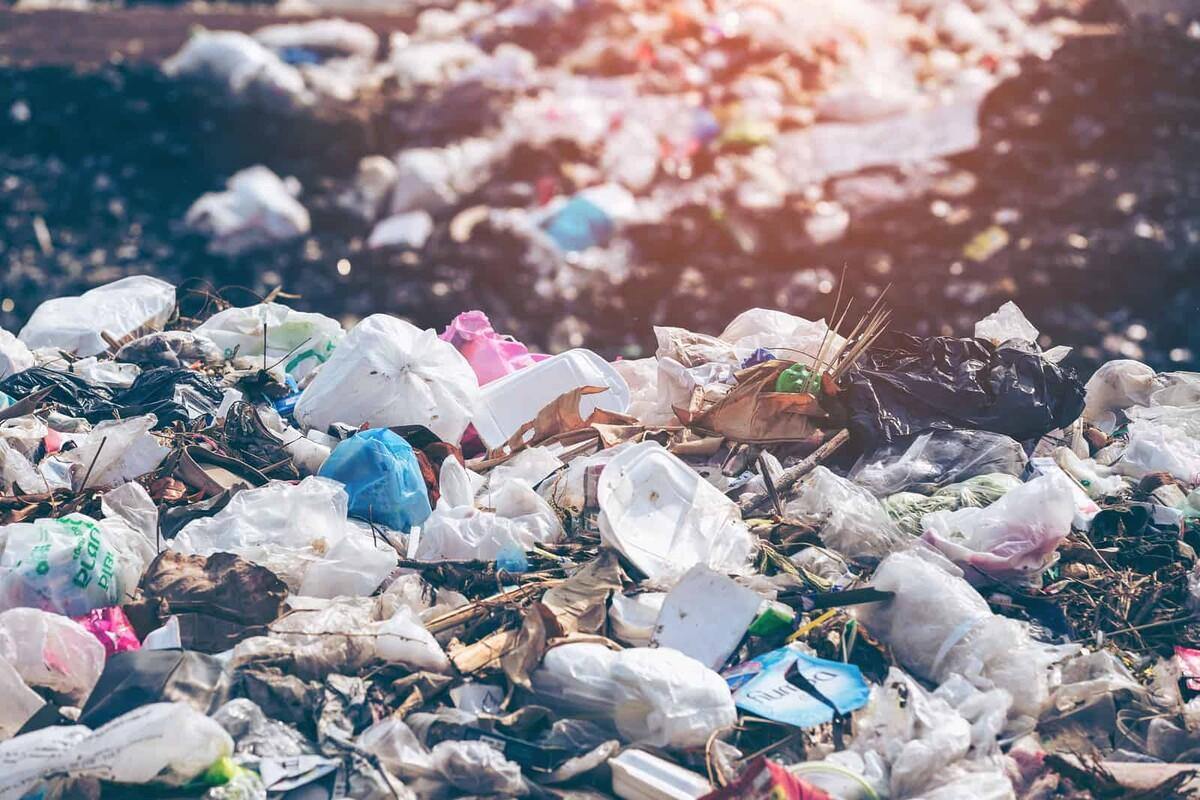 7 dias de lixo: ensaio sobre consumo consciente